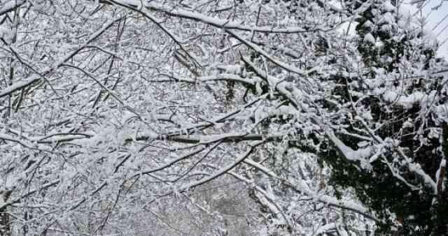 Gjatë dy ditëve të ardhshme, mot i vranët dhe me reshje të dobëta bore