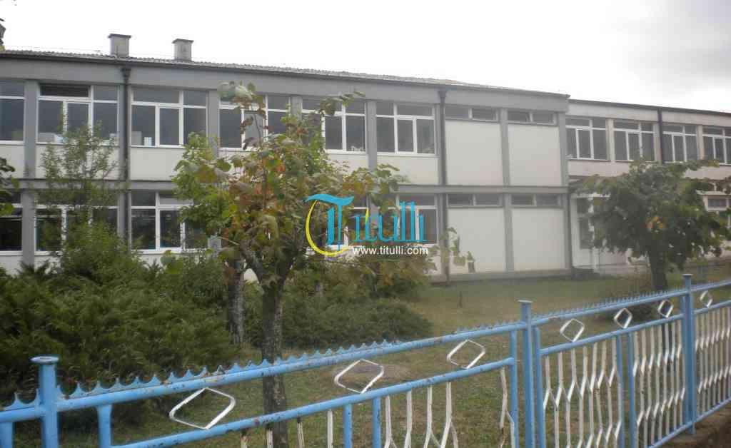 Shkolla fillore në fshatin Leran me probleme teknike