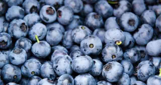Fruti që parandalon plakjen, mund ta pini edhe si lëng