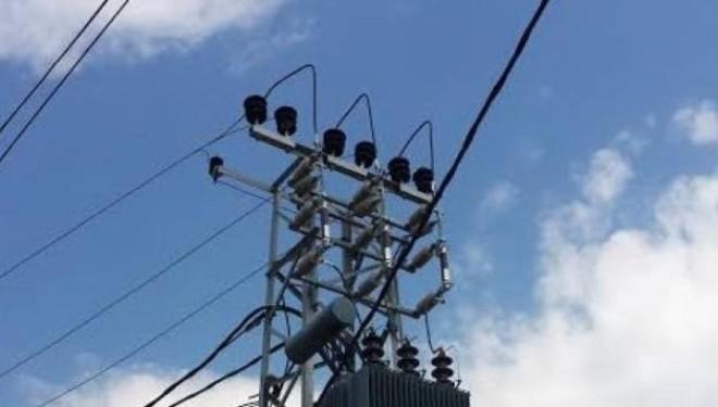 Raporton në polici: Këputet një kabllo e rrymës elektrike dhe si pasojë të gjitha bagëtitë i ngordhin