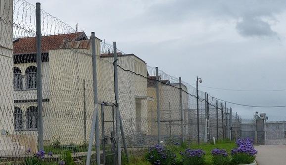 Arrestohet shtetasja e Shqipërisë, kërkohej me urdhëresë të gjykatës