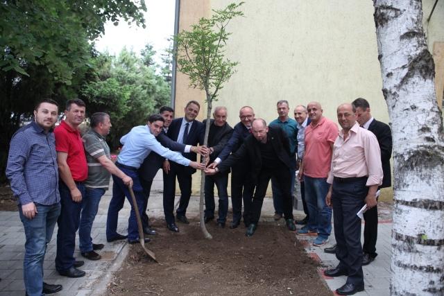 """LDK e Gjilanit mbjell fidan në rrugën """"Idriz Seferi"""", në Ditën Ndërkombëtare të Mjedisit"""