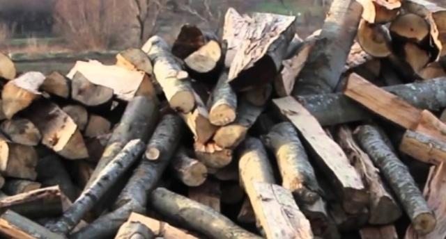Transportonte dru ilegalisht, arrestohet pasi pengoi zyrtarët që donin t'ia konfiskon ato
