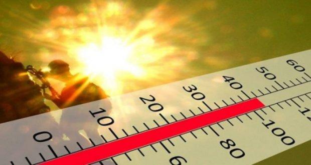 Holandë: Regjistrohet temperatura më e lartë pas 75 vitesh!