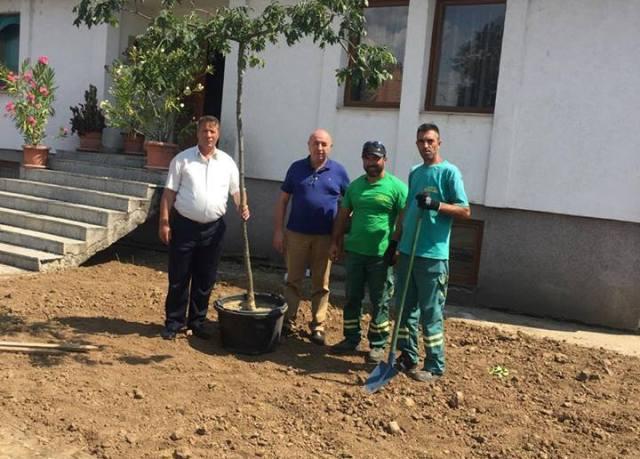Pozheran: Fillon rregullimi i kopshtit të shkollës muze