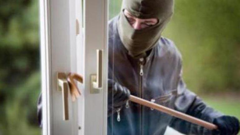 Kapet pejani, dyshohet për disa vjedhje në Viti