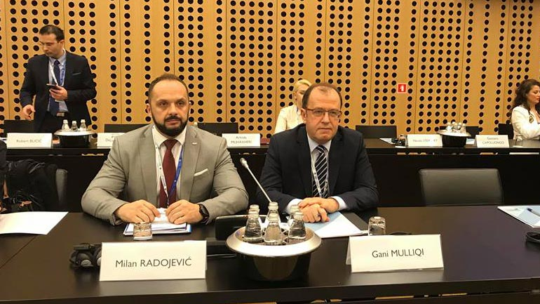 Zëvendësministri Radojevic po merr pjesë në takimin ministror të Procesit të Brdos