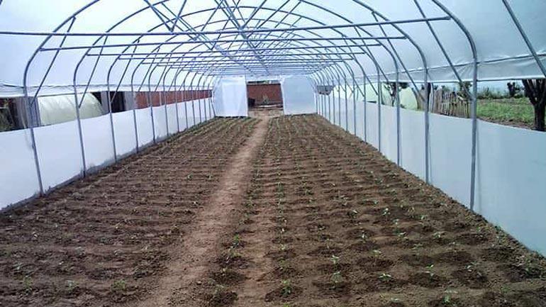 Në Kamenicë do të mbahet sesioni informues në sektorin e bujqësisë