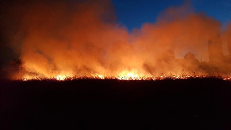 """Gjilani në """"luftë"""" me zjarre fushore, shuhen ato pa u shkaktuar dëme të mëdha – VIDEO"""