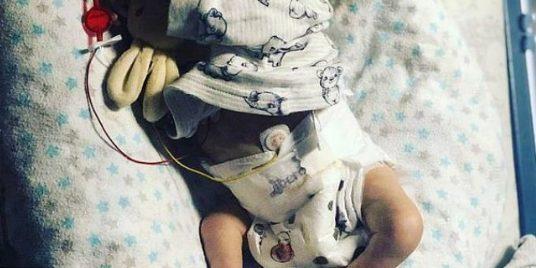 Mbijeton foshnja 500 gram, befason edhe mjekët