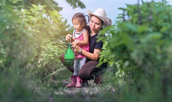 Fëmijët që u ekspozohen pesticideve rrezikohen nga autizmi