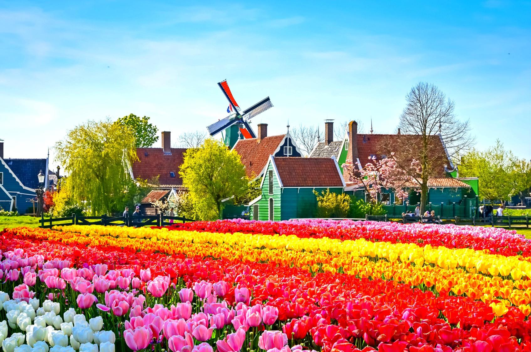 Holanda vendi i parë në botë që lejon eutanazinë