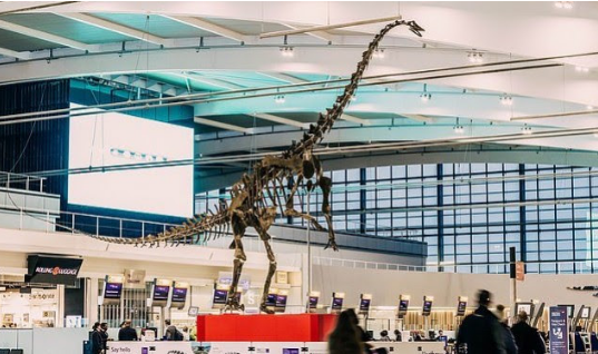 Dinozauri i vjetër del në ankand, vlera mbi 1.5 milionë euro