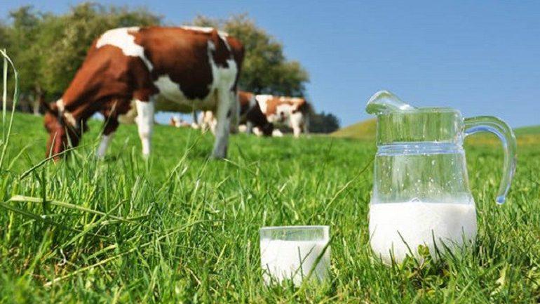 Fauna lëshon vërtetime për fermerët e Komunës së Gjilanit, përfitues të subvencioneve nga MBPZHR