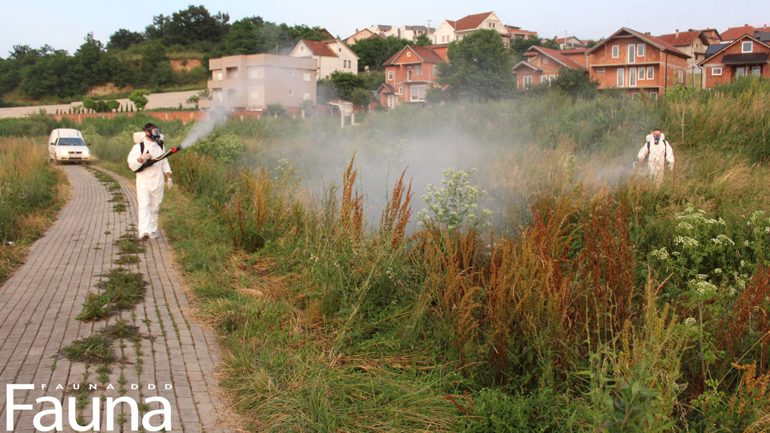 Fauna: Sonte nis faza e dytë e dezinsektimit hapësinor në komunën e Gjilanit