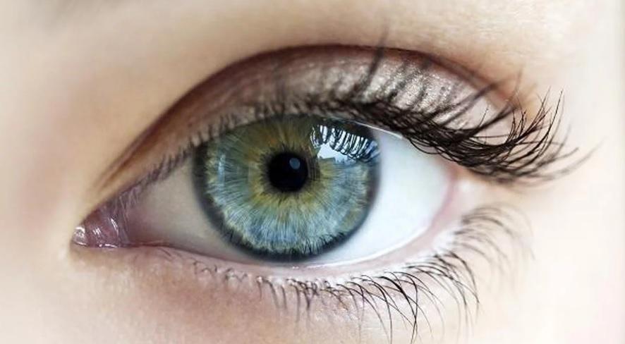 Pse u dridhet syri? Ky është shpjegimi shkencor