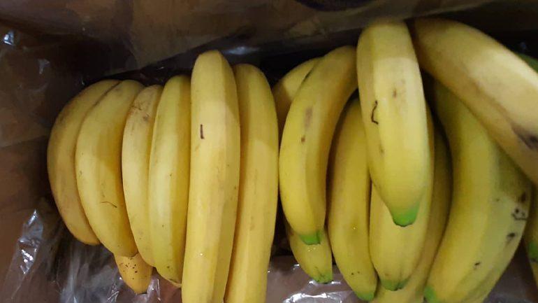 Bananet të mira kundër pagjakësisë dhe depresionit