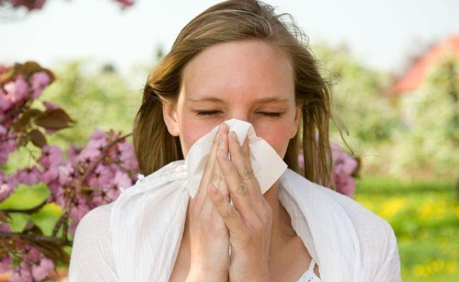 Alergjitë dhe sëmundjet e stinës, ky produkt i lufton ato