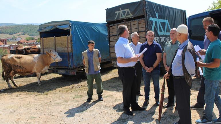 Gjilani shpërdan pesë krerë gjedhesh për farmerët, donacion i shkollës së agrobiznesit