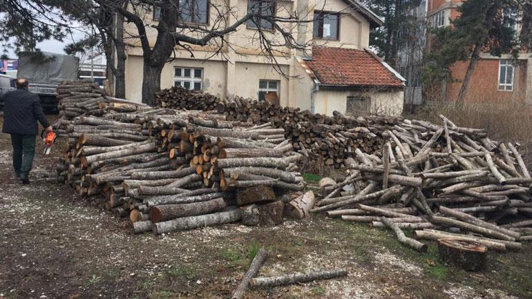 Ja sa metra dru janë konfiskuar në Komunën e Vitisë!