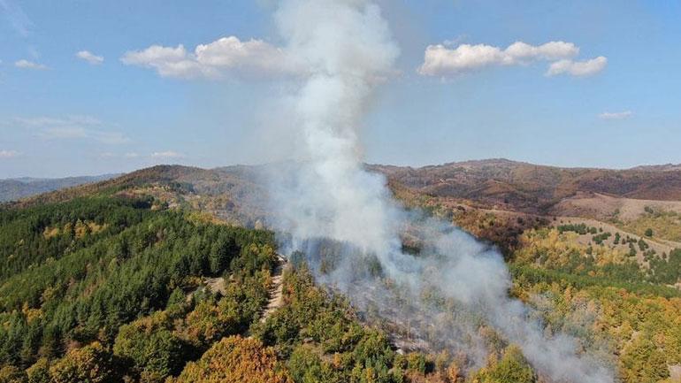 Kastrati kërkon nga qytetarët të mos shkaktojnë zjarre të cilat e dëmtojnë natyrën e Kamenicës