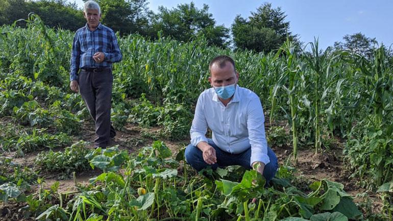 Vizitojnë fermerët e Zajqecit për të parë dëmet e shkaktuara nga breshëri