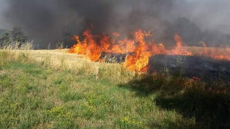 Komuna e Vitisë ngrit gjendjen e gatishmërisë shkaku i zjarreve