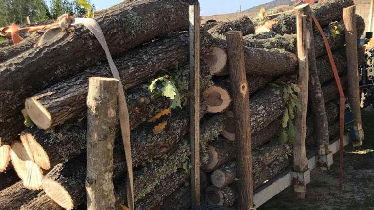 Policia e Kosovës gjatë kontrollit ka ndaluar një traktor i cili transportonte dru pa dokumente valide